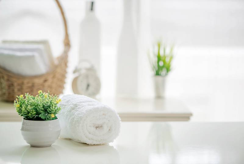 domestic cleaners perth